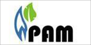 PAM SYSTEMS